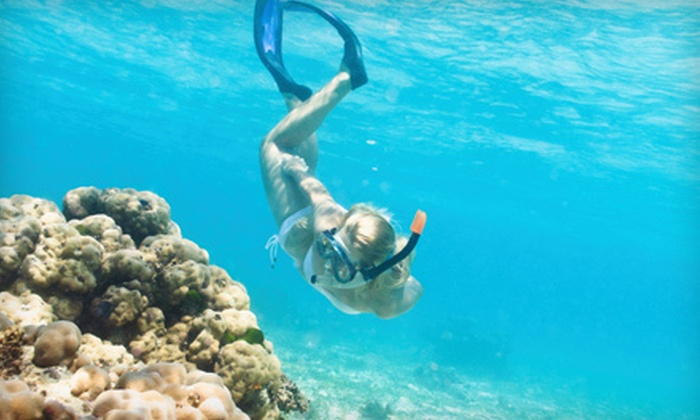 Fish Benthic - Crystal River: $200 for Six-Hour Scalloping Trip for Four from Fish Benthic ($400 Value)