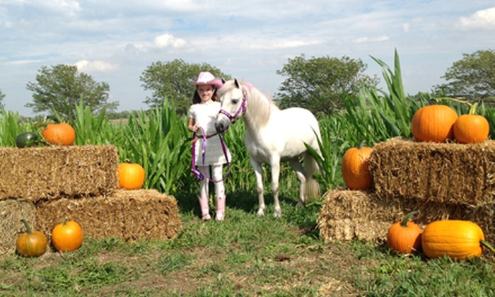 Hickory Creek Ranch - Spring Hill: Family Fall Festival Outing for Two, Four, or Six at Hickory Creek Ranch (Up to 54% Off)