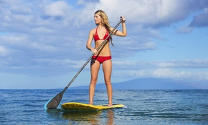 Marina Paddle: Two-Hour Group Standup-Paddleboard Lesson for One, Two, or Four from Marina Paddle (Up to 50% Off)