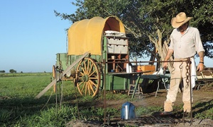 George Ranch Historical Park: Colonist or Texian Membership to George Ranch Historical Park and Fort Bend Museum in Richmond (Up to 58% Off)