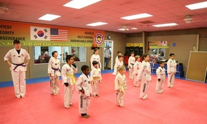 TEAM RA Martial Arts: One Week of Unlimited Martial Arts Classes at TEAM RA Martial Arts (76% Off)