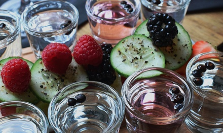 Gin Tasting Experience for Two or Four at Jenever