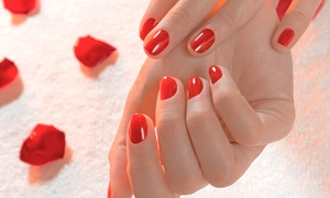 Salon 58 : One Shellac Manicure from Salon 58 (50% Off)