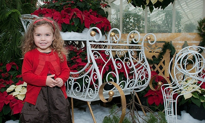 LakeView Photography - Buffalo: $65 for a One-Hour On-Location Holiday Photo Shoot for Up to Six with Prints from LakeView Photography ($675 Value)