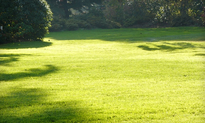 Steve's Yard Service - University Place: One, Three, or Five Lawn-Maintenance Visits from Steve's Yard Service (Up to 52% Off)