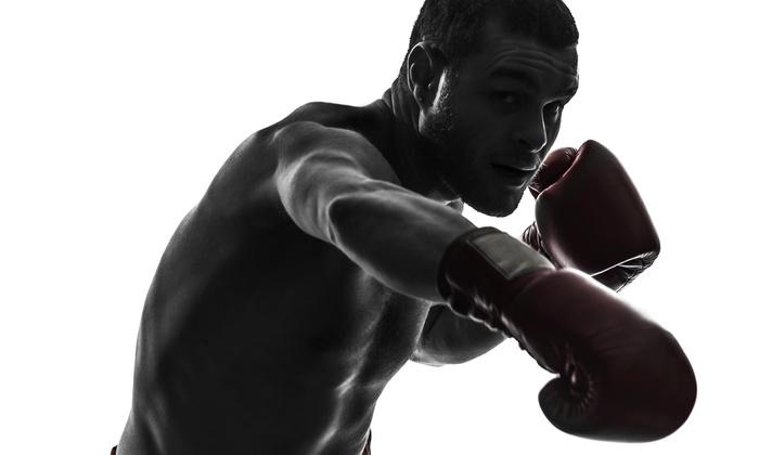 Tennessee Brazilian Jiu-jitsu Academy - Murfreesboro: Four Weeks of Unlimited Boxing or Kickboxing Classes at Tennessee BJJ Academy Murfreesboro (61% Off)