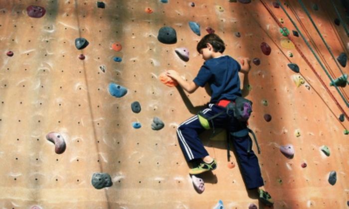 Spirals Gym & Ed-Venture Kids Center - Spirals Gym & Ed-Venture Kids Center: One-Week Summer Camp for Kids Aged 3–5 or in Grades 1–6 at Spirals Gym & Ed-Venture Kids Center (Up to 57% Off)