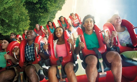 Busch Gardens Williamsburg and Water Country USA Ticket (50% Off)