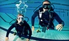 Berry Dive Center - Northbrook: PADI Referral Course, Advanced Certification, or Full Certification at Berry Dive Center in Northbrook (Up to 56% Off)