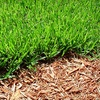 Up to 54% Off Lawn Maintenance and Fertilization