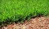 Lawn Masters: Two or Four Lawn-Maintenance Visits Including Mows, Trimming, Edging, and Fertilization from Lawn Masters (Up to 54% Off)