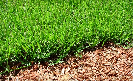 2 Lawn-Maintenance Visits with 1 Fertilization Treatment (an $85 value) - Lawn Masters in