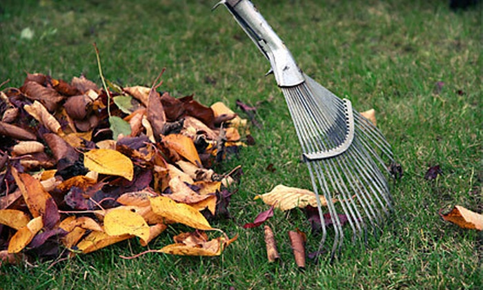 Affordable Lawncare - Carnegie: Fall Lawn-Cleanup Package or Aeration for Up to Half an Acre from Affordable Lawncare (Up to 71% Off)