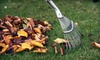 Affordable Lawncare: Fall Lawn-Cleanup Package or Aeration for Up to Half an Acre from Affordable Lawncare (Up to 71% Off)
