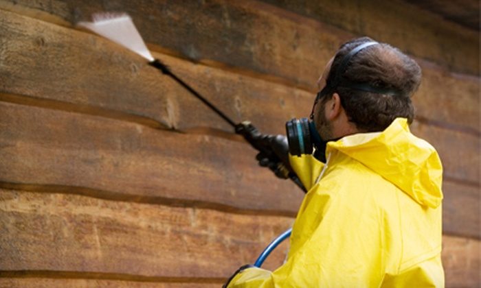 A Touch of Glass, LLC - Denver: Exterior Home Power Washing for Up to 2,000 or 3,000 Square Feet from A Touch of Glass, LLC (Up to 73% Off)