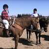Up to 51% Off Horseback-Riding Lessons