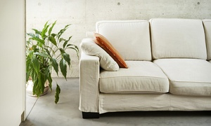 DM Clean: DM Clean – Barra da Tijuca: limpeza e higienização de sofá de 3 ou 5 lugares (opção com impermeabilização)