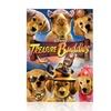 Disney Treasure Buddies DVD