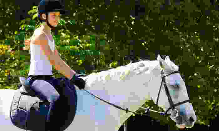 White Training Stables  - Wildcat: Four, Six, or Eight Private Horseback-Riding Lessons at White Training Stables (Up to 55% Off)