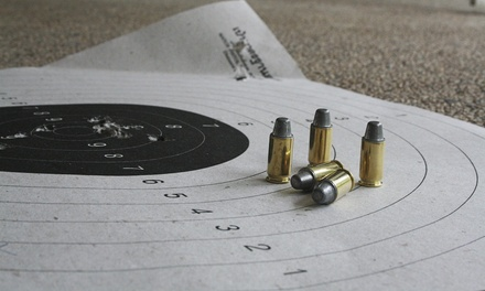 Concealed-Handgun-License Course for One or Two at Safety CHL (Up to 71% Off)