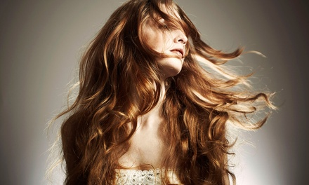 Haircut and Style with Optional Partial Highlights or Single-Process Color at Sun's Design Salon (Up to 56% Off)
