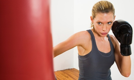 $24 for 16 Kickboxing Classes at BR Krav Maga ($148 Value)