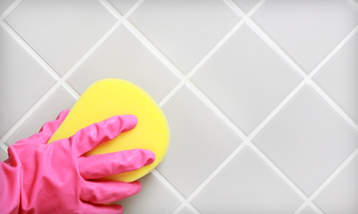 Natganic Housecleaning Service - Pompano Beach: Two or Four Man-Hours of Housecleaning from Natganic Housecleaning Service (Up to 63% Off)