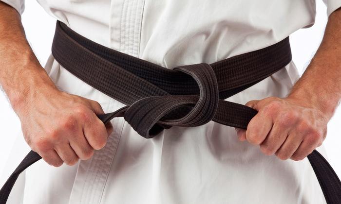 Villari's Martial Arts  - Multiple Locations: 10 Classes or One Month of Shaolin Kempo Karate Classes at Villari's Martial Arts (Up to 91% Off)