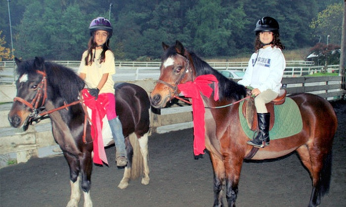 Willow Pond Ranch - Fox Horsemanship: Four One-Hour Small-Group Riding Lessons or Five Days of Spring Riding Camp at Willow Pond Ranch (Up to 54% Off)