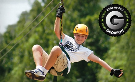 Zipline Canopy Tour and a Motorized Sky Surfer Ride (a $100 value) - Adventure Ziplines of Branson and Sky Surfer in Branson