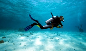 Scuba Works: PADI Open-Water Scuba-Certification Course for One or Two from Scuba Works (Up to 58% Off)