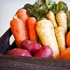 53% Off Organic-Produce Delivery from Freggies