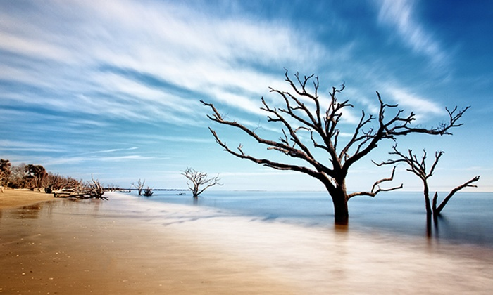 BlueHour Photo Ventures - Charleston and Edisto Island: $99 for a Four-Day Low Country-Photography Class from BlueHour Photo Ventures ($295 value)