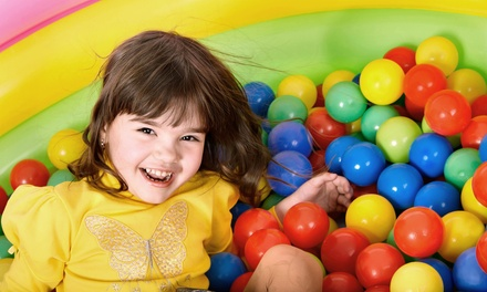 Lifetime Family Membership with Four Classes and Four Play Sessions at My Gym Children's Fitness Center (62% Off)