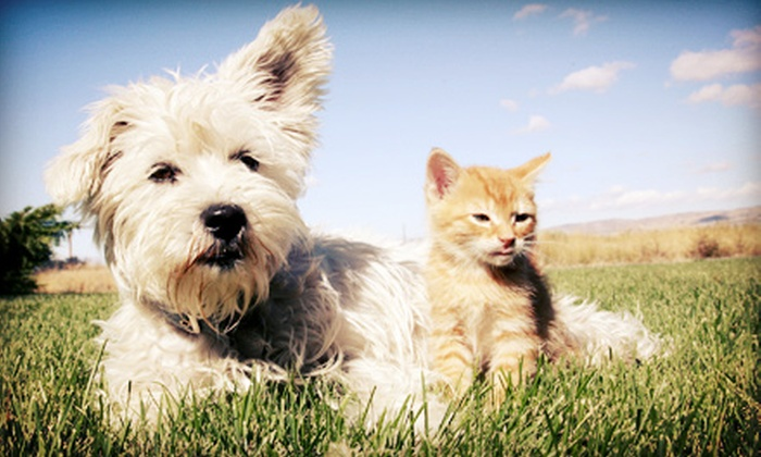 Calgary Pet Expo  - Spruce Meadows Equiplex: Day at Calgary Pet Expo for Two or Four at Spruce Meadows on April 27–28 from Canwest Productions (Up to Half Off)