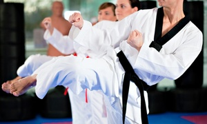 National Karate - Andover: $15 for Unlimited Martial-Arts Classes with Uniform at National Karate ($150 Value)