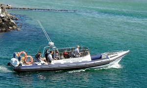 Portrush Sea Tours: Giant's Causeway Boat Trip for One or Two Adults or Family at Portrush Sea Tours (Up to 50% Off)