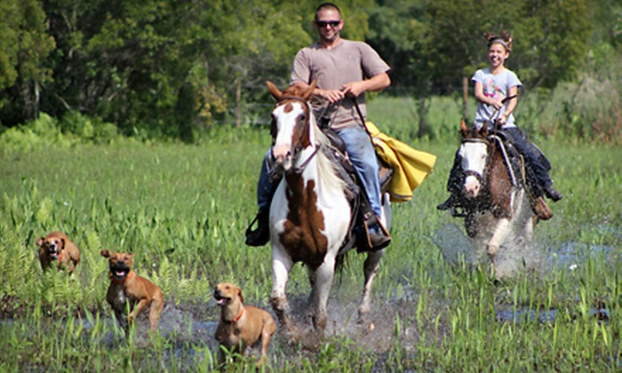 Myakka River Ranch - Myakka City: 60-Minute Horseback Trail Ride for Two or Four at Myakka River Ranch (Up to 72% Off)