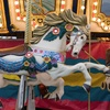 57% Off Carousel Rides and Beach Parking