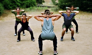 SmithBuilt Fitness: 20-Minute Fitness Classes at SmithBuilt Fitness (Up to 86% Off). Three Options Available.