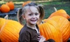 Priddy Farms - Bartlett: Autumn Outing with Hayride, Train Rides, and Pumpkins for a Family with Two Kids or Four Kids at Priddy Farms (Half Off)