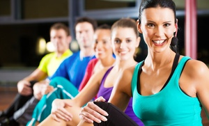 CATZ of Long Island: Month of Fitness Sessions or 8 Adult Fitness Sessions at CATZ of Long Island (Up to 65% Off)