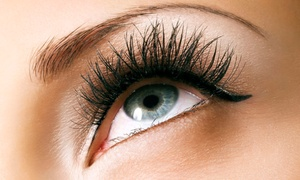 Plush Beauty Bar: Full Set of 3D Eyelash Extensions for the Upper or Upper and Lower Eyelids at Plush Beauty Bar (Up to 53% Off)