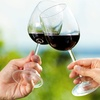 Up to 56% Off VIP Winery Package with Tasting for Two