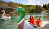 Gilroy Gardens - Coyote: $54 for Two Admissions to Gilroy Gardens ($110 Value)