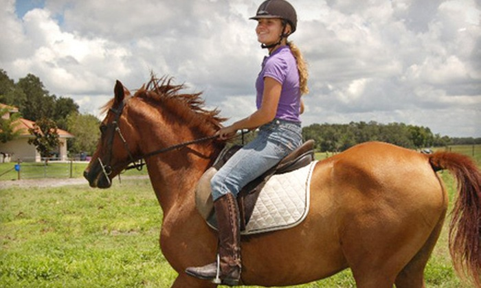 Myakka River Ranch - Myakka City: 60-Minute Horseback Trail Ride for Two or Four at Myakka River Ranch in Myakka City (Up to 74% Off)