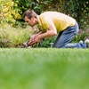 45% Off Landscaping