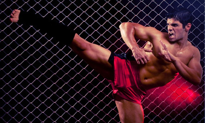 Northern Virginia Mixed Martial Arts & Fitness - Lyon Village: One or Two Months of Unlimited Martial-Arts Classes at Northern Virginia Mixed Martial Arts & Fitness (Up to 79% Off)