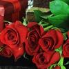 50% Off One Dozen Boxed Long Stem Roses