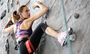 Coastal Climbing Centre: One-Month or 10-Visit Beginner Rock-Climbing Package for One or Two at Coastal Climbing Centre (Up to 78% Off)